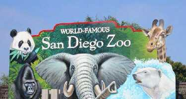 ᐅ San Diego Zoo - Compare Ticket Prices from Different